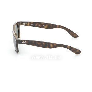 Очки Ray-Ban New Wayfarer RB2132-902 Tortoise/Natural Green (G-15XLT), вид слева