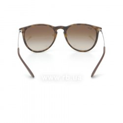 Очки Ray-Ban Erika RB4171-865-13 Avana Rubber/Gradient Brown, вид сзади
