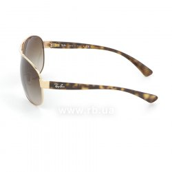 Очки Ray-Ban Active Lifestyle RB3386-001-13 Arista/Poly. Gradient Brown, вид слева