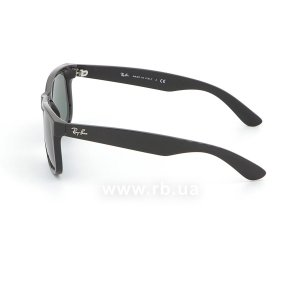Очки Ray-Ban Justin RB4165-601-71 Black | Grey/Green, вид слева