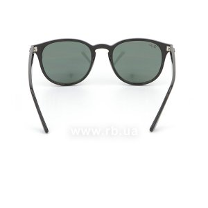 Очки Ray-Ban Highstreet RB4259-601-71 Black | Grey/Green, вид сзади