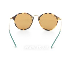 Очки Ray-Ban Round Fleck Pop RB2447-1244-N9 Havana / Arista|  Yellow Polarized, вид сзади
