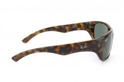 Очки Ray-Ban Active Lifestyle RB4177-710 Dark Havana | Natural Green (G-15XLT)