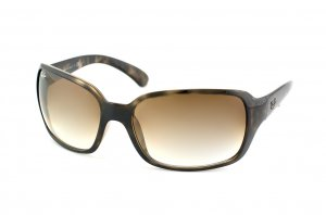 Очки Ray-Ban Highstreet RB4068-731-51 Dark Havana | Green Grey