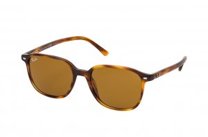 Очки Ray-Ban Leonard RB2193-954-33 Light Havana | Natural Brown