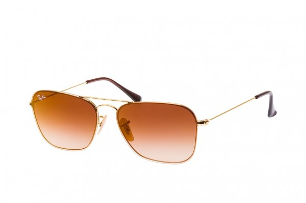 Очки Ray-Ban Youngster RB3603-001-S0 Arista | Gradient Brown